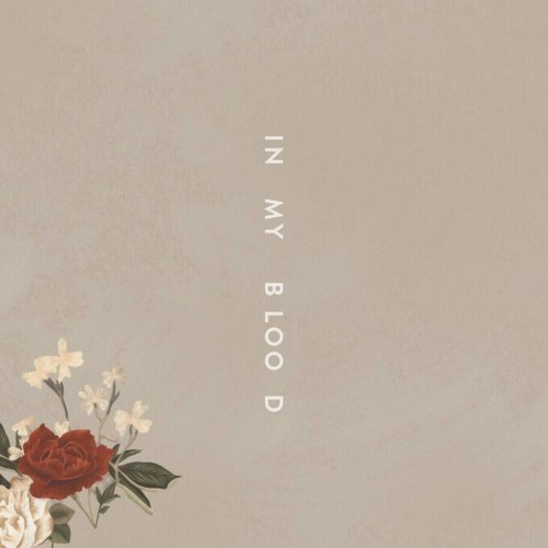 http://www.shotcan.com/images/2018/03/22/Shawn-Mendes-In-My-Blood.jpg